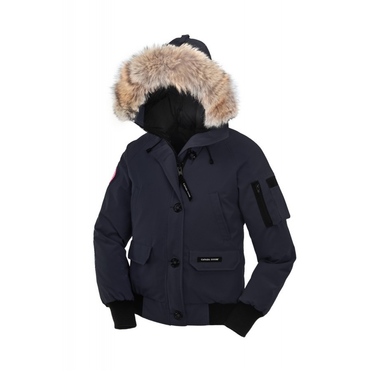 canada goose chilliwack grise