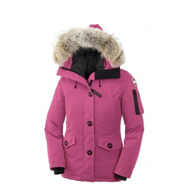 reduction canada goose